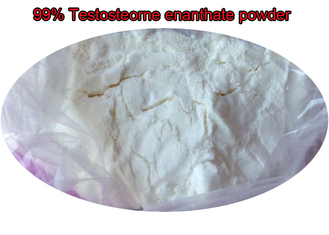 China High Purity Testosterone Enanthate Powder Anabolic Steroid For Muscle Building supplier