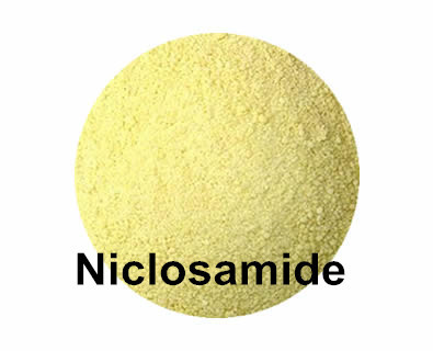 China Light Yellow Powder Niclosamide CAS:50-65-7 For Human And Animal Tapeworm Infections supplier