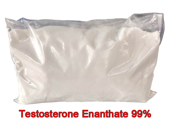 Fitness Test E Pure Testosterone Steroid Enanthate Powders Hormone CAS 315-37-7